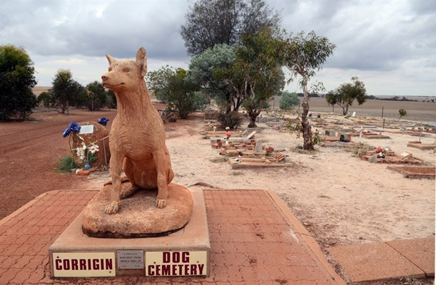 Attractions - Dog Cemetery