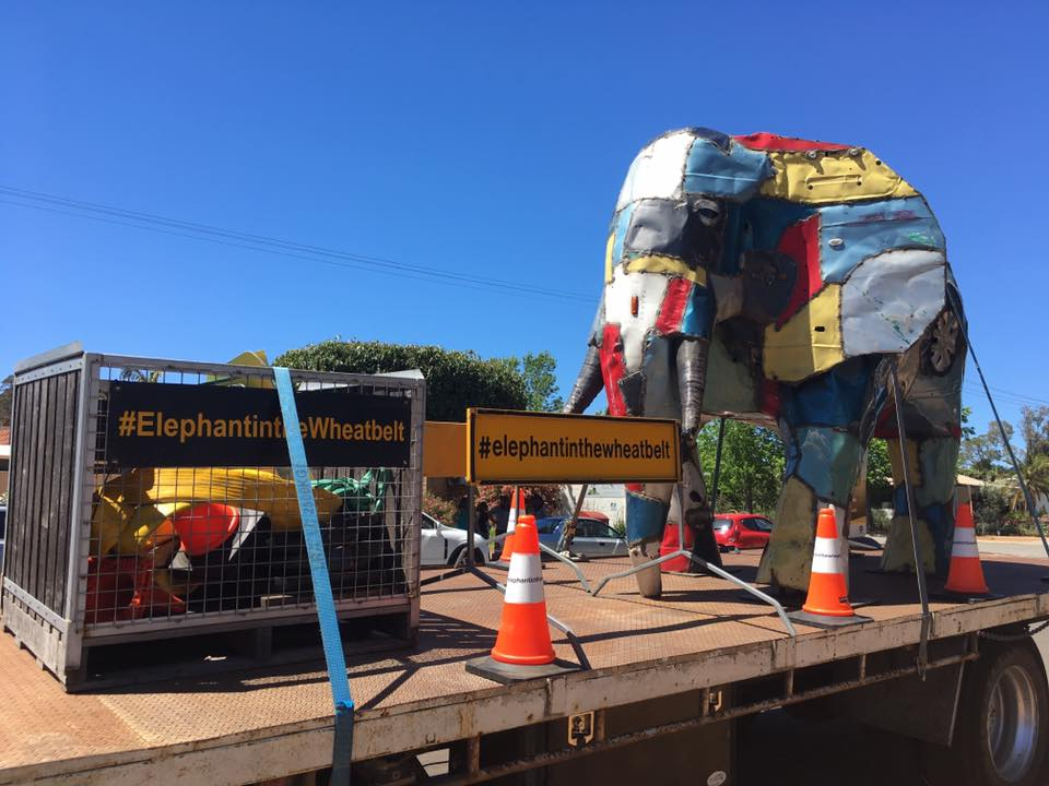 RAC Elephant in the Wheatbelt MURAL PROJECT