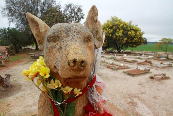 CORRIGIN DOG CEMETERY GOES TO AIR